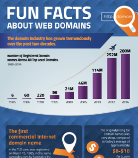 same-day-delivery-web-domain-facts